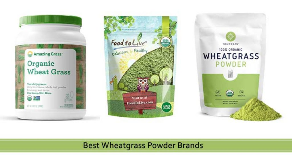 10 Best Wheatgrass Powder Brands To Buy In 2021 Product Reviews